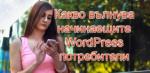 Какво вълнува начинаещите WordPress потребители
